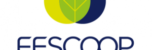 cropped-fescoop_logo_site-01-2.png